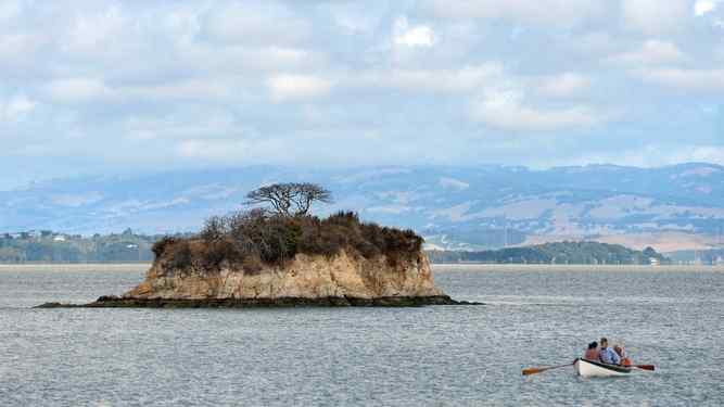 Boaters row near Rat Rock Island in the waters off China Camp State Park in San Rafael.